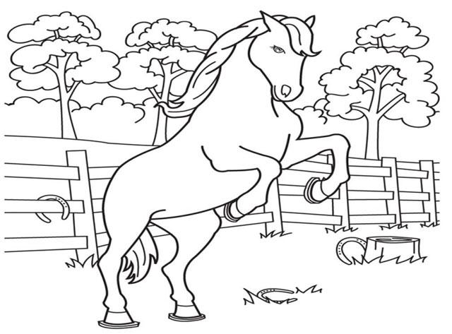 tranh rỗng tô màu chú ngựa pony