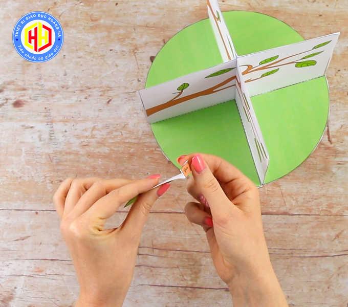 Cách Làm Trang 3D Vòng Đời Phát Triển Của Bướm